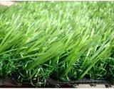 В саду травы