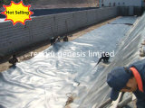 Прямые поставки HDPE Geomembrane на заводе по морскому праву огурец бассейн/соли пруд гильзы цилиндра