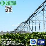 Sistema dell'attrezzatura per irrigazione a pioggia di irrigazione dell'azienda agricola