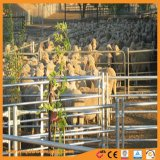 Прочного овец двор в Nz маркетинга оптовая торговля