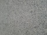 Más reciente de china de Fujian y barato de granito gris claro G655