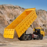 Hyva Hydrozylinder-Rückseiten-Speicherauszug-Lastkraftwagen mit Kippvorrichtung