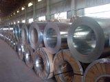 Personalizado de alta calidad laminado en frío de acero galvanizado tira de la bobina Pre