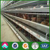 Сборные Китая стали структуры птицеферм с Cage-Rearing оборудования