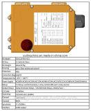 La parte superior vender 12 botones de radio de la grúa grúa Industrial Mando a distancia F24-12S