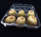 Bandeja ecológica de alimentos descartáveis para comida de frutas (bandeja PP)