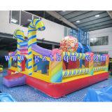 Thème personnalisé commerciale adulte gonflable Kids Bouncer House/Château de saut