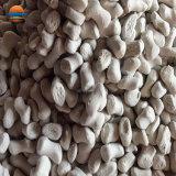 プラスチック添加物の乾燥性があるMasterbatchの湿気の吸収物