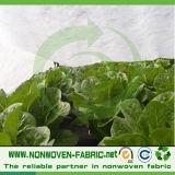 野菜カバーのためのTNTの非編まれたファブリック