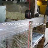Tbs1250 De Machine van de Lintzaag voor Stralen