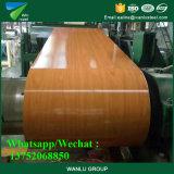 PPGI imprimió la bobina de acero con el modelo de madera