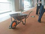 바퀴 무덤 공장 좋은 품질 최고 가격 Wb3800