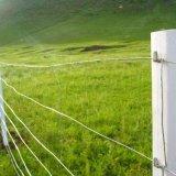 高品質によって電流を通されるヒツジか農場またはフィールドまたはシカの金網の塀