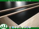 Madera contrachapada Shuttering con la base del álamo para la construcción
