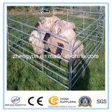 5foot*10foot米国は家畜のパネルか牛畜舎のパネルを使用した