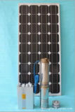 Angeschaltener Wasser-Pumpen-Solarwasser-Pumpen-Solargarten