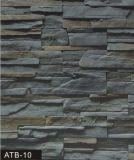 Revêtement en pierre de Foshan (pierre artificielle) (l'ATB-10)