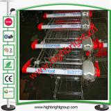 Cesta de duplo carrinho de compras de plástico para Hyper Market