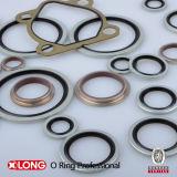 Bonded autocentrante Seal per Sealing