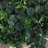 Зеленый искусственного вертикальной стены в саду на внутреннее наружное оформление ландшафтный дизайн