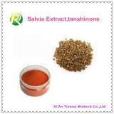 100%自然なSalviaのエキスの粉Tanshinone