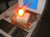 De middelgrote Smeltende Oven van de Frequentie voor Goud, Zilver, Koper, het Verwarmen van het Aluminium