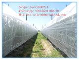 バージンのHDPEの緑の野菜は昆虫のネットの白いはえネット、反アブラムシのネット、温室のための反昆虫のネットを植える