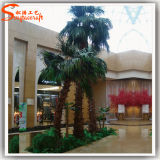 De recentste Kunstmatige Palm van de Glasvezel van de Stijl