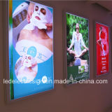 Onverwachte Aluminum Profile voor LED Light Box met Billboards voor LED Sign