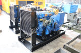 Tipo aperto del motore diesel di Ricardo/tipo silenzioso generatore portatile diesel 50kw