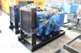 Ricardo 디젤 엔진 열려있는 유형 또는 침묵하는 유형 디젤 엔진 휴대용 발전기 50kw