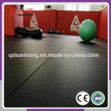 Couvre-tapis coloré de judo de Tatami d'éponge d'unité centrale