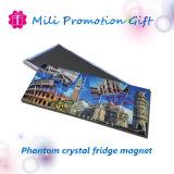 Фантом Crystal устроенных правительством Пакистана торгах холодильник магнита