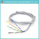 100ft equipo Ethernet UTP CAT5 CAT Cat5e6un cable LAN / Cable de red