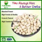 2018 Nouveau Cop Organic arachides Arachides blanchis de la Chine avec des prix bon marché