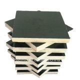 Construcción y mobiliario de madera contrachapada frente película grado