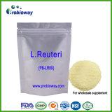 Les suppléments en bloc en gros de Reuteri Probiotics de lactobacille dirigent Nutraceuticals