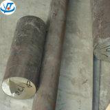 Gesmede Staaf 120mm van Roestvrij staal 2520
