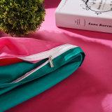 Insieme di vendita caldo del lenzuolo del cotone egiziano di buona qualità