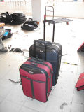 荷物袋旅行荷物セットの外の流行SKDのトロリー荷物