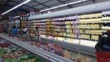 空気カーテンが付いている中国の製造業者冷却装置または熱い販売の開いたスリラー