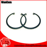 M11のためのCummins Motor Clamp Ring