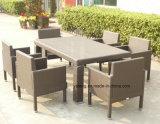 Ensemble d'ameublement de salle à manger en rotin à l'extérieur avec un fauteuil en rotin et des meubles de table en rotin Knockdown (YT111) de 10 à 12 personnes