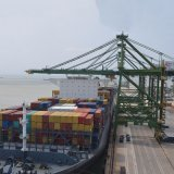 Gru portale del singolo porto del fiocco per il bacino ed il cantiere navale