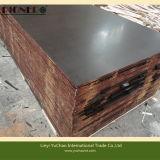 compensato affrontato pellicola di 1250X2500X21mm con l'alta qualità di marchio/il compensato Shuttering/il legno usato