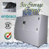 Escaninho de armazenamento ensacado do gelo para o posto de gasolina (DC-600)