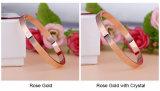 2017 modisches Rosen-Goldsilber-Armband für Frauen