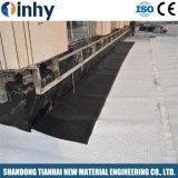 Feuille de polyéthylène de drainage bosselée, sous-sol l'Imperméabilisation Membrane bosses