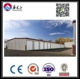 Almacén modificado para requisitos particulares alta calidad de la estructura de acero (BYSS017)