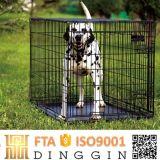 Chiot cage de fer pour petit chien pour la vente